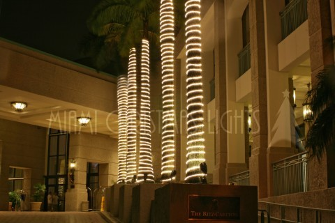 The Ritz Carlton of Coconut Grove